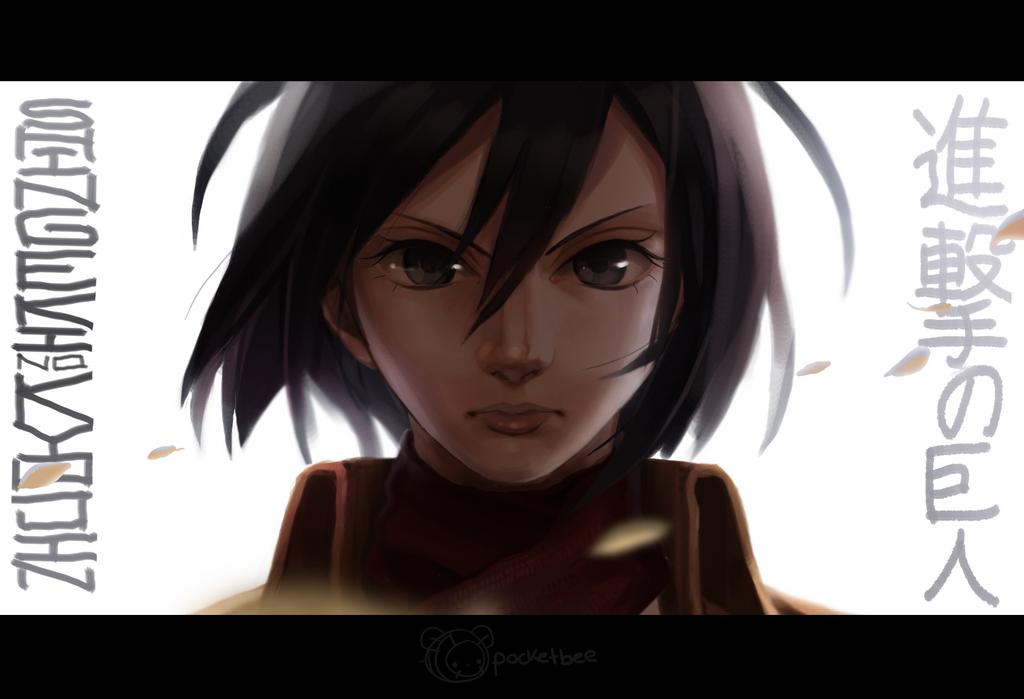 Mikasa by pocketbee