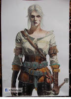 Ciri the Lion Cub of Cintra by Christyne01