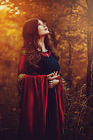 The Lord of the Ring cosplay. Arwen Undomiel by Mellefuielle