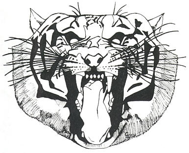 http://fc06.deviantart.net/fs11/i/2006/173/7/1/T_shirt_Tiger_by_Ripplin.jpg