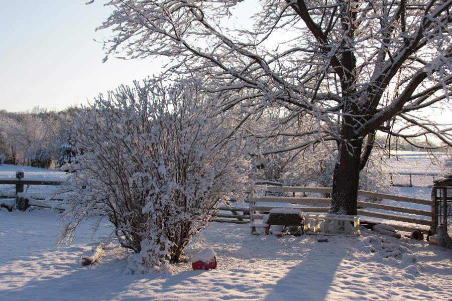 Winter Snow Stock2 by Lovely-DreamCatcher