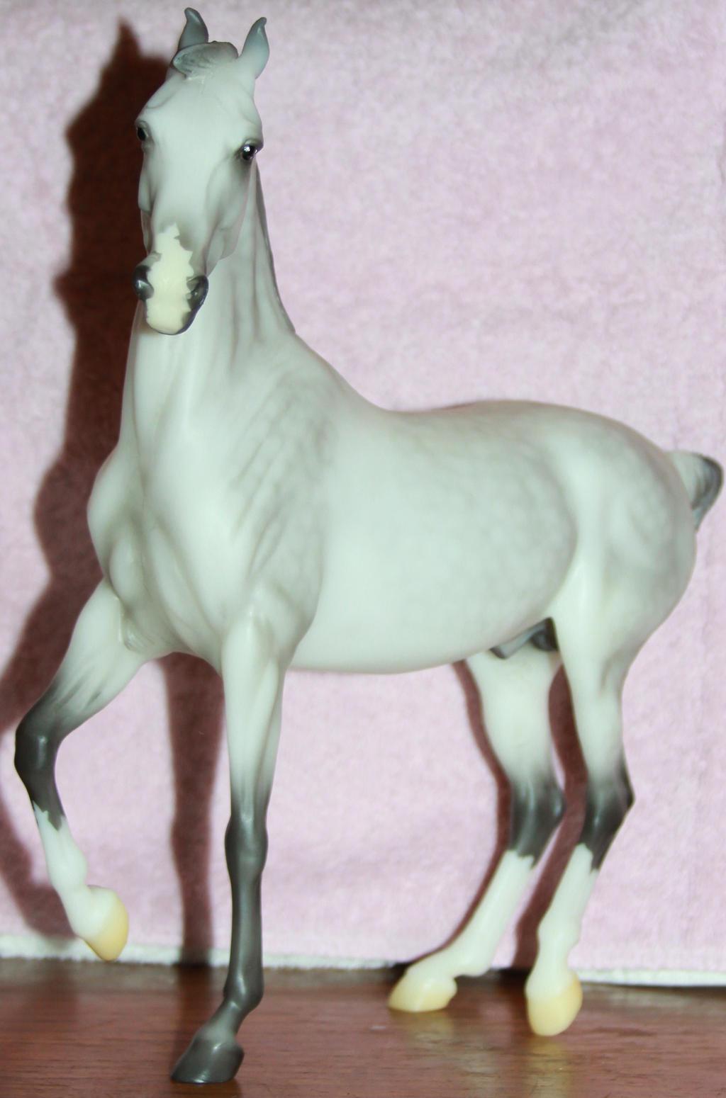 Breyer - Rajah 3 of 5 Stock~ Marwari Horse by Lovely-DreamCatcher