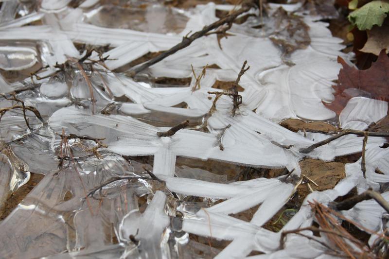 Ice Stock by Lovely-DreamCatcher