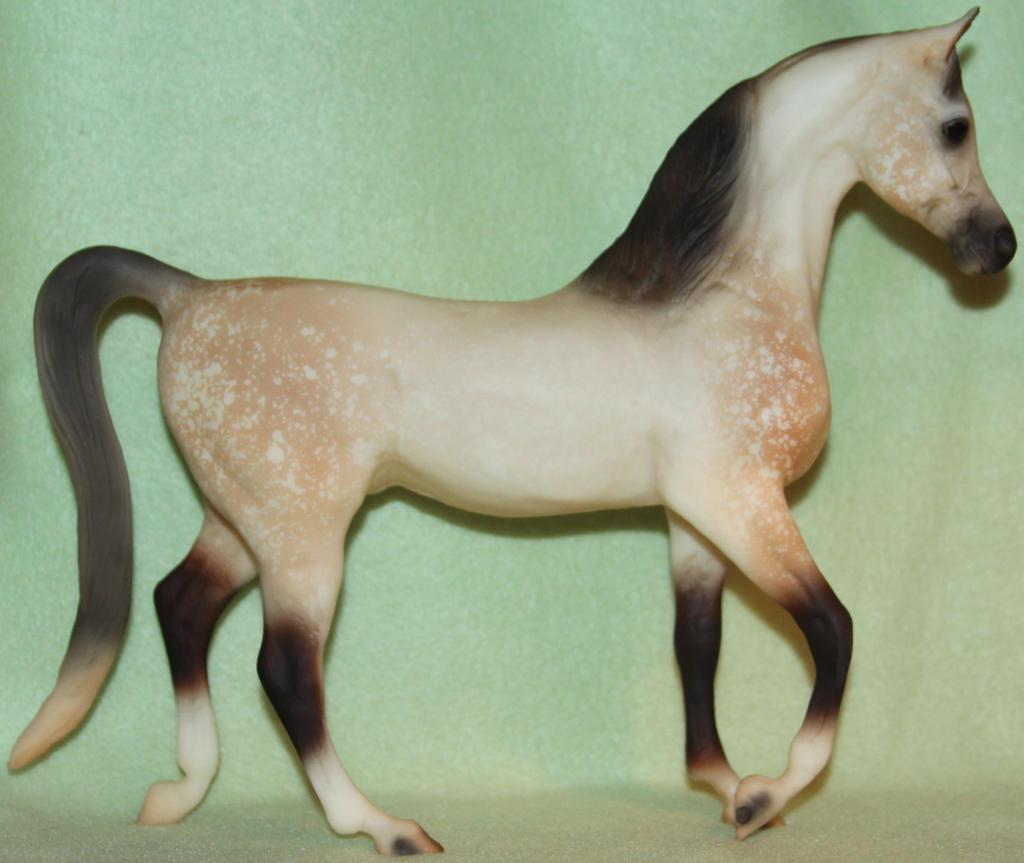 Breyer Arabian Stallion Stock by Lovely-DreamCatcher