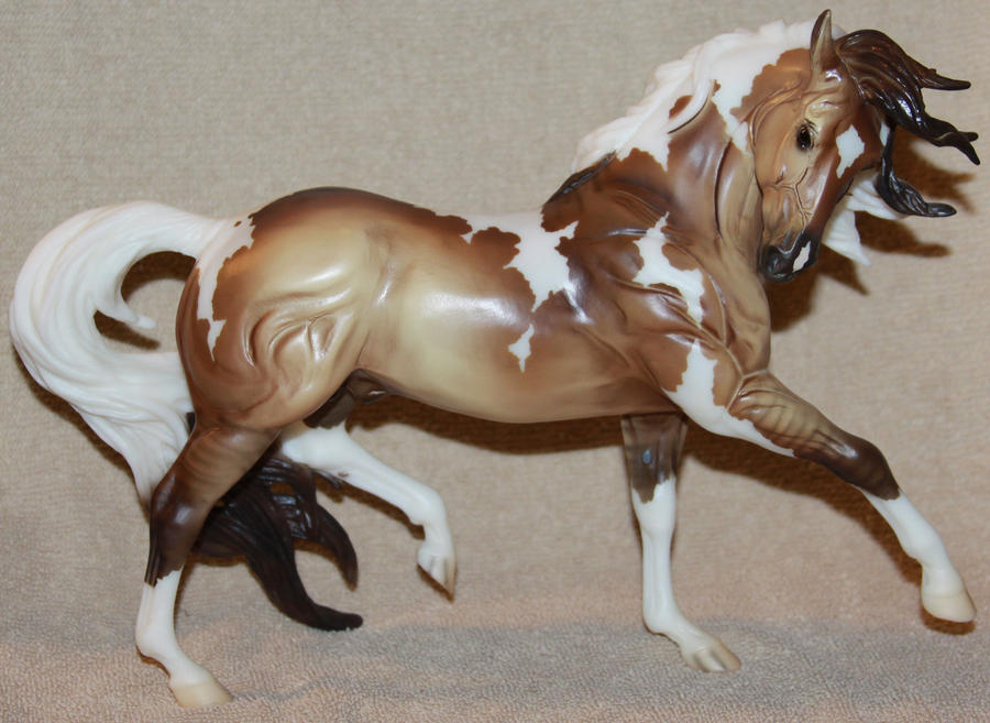 Breyer - Samba Surprise - Stock by Lovely-DreamCatcher