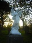 Graveyard stock04