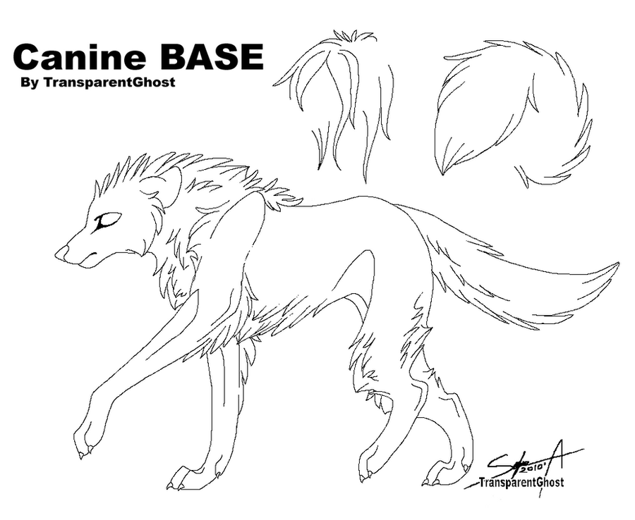 Canine Base by TransparentGhost