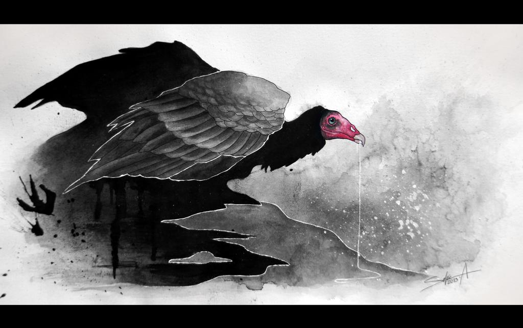 Vautour Noir by TransparentGhost