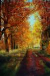 Autumn /study
