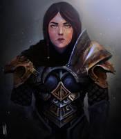Skyrim Armor Fan Art! by VooDooVal
