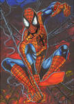 Spider Man Sketch Card