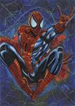 Spider Man sketch card 2012A