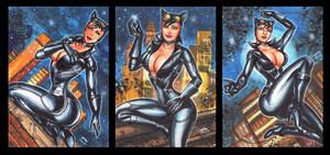 INJUSTICE CATWOMAN PERSONAL SKETCH CARD SET B by AHochrein2010