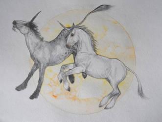Unicorns by DandyHerulokion