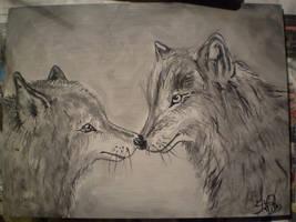 wolf by shannonscott
