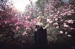 Magnolia Princess