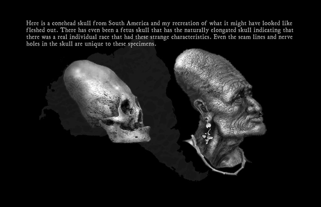 Conehead skull by Arshawsky