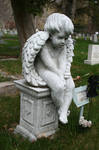 Mountain View Cemetery 77