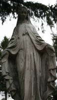 Rose Hill Cemetery 6