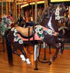 Missoula Carousel 12
