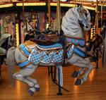 Missoula Carousel 19