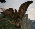 MoA Museum 175 Eagle