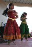 Holi Festival 2010 41