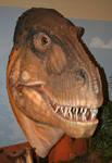 Fruita Dino 6