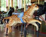 Denver Zoo 289 Carousel