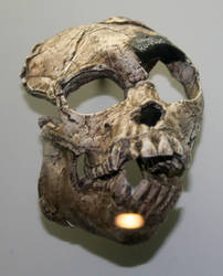 Denver Museum Skeletal 535 by Falln-Stock