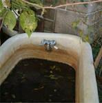 Grungy Bathtub 1