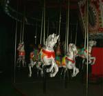 Midnight Carousel 7