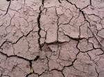 Cracked Mud Payson 1