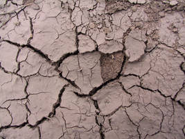 Cracked Mud Payson 2 by Falln-Stock