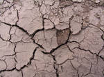 Cracked Mud Payson 2