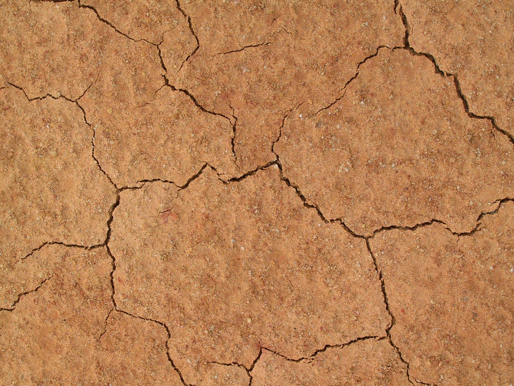 NC Cracked Mud 11