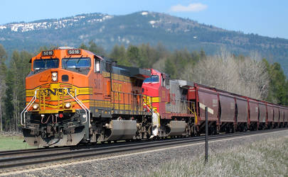 BNSF 5016 through Algoma