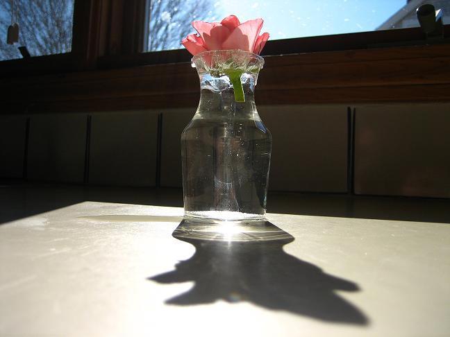 glass flower by caseyface