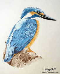 Kingfisher Profile by Happy5art