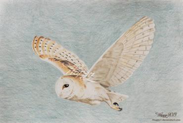 Barn Owl Flying by Happy5art