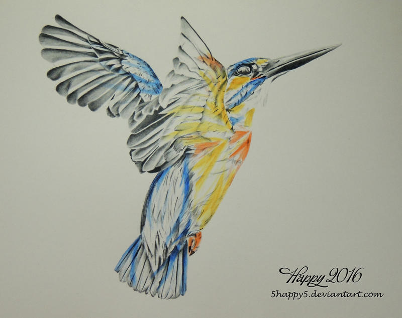 A Flash of Colour, Flight by 5Happy5