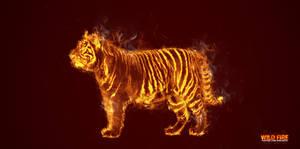 Wild Fire Manip