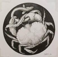 Crab edited-1