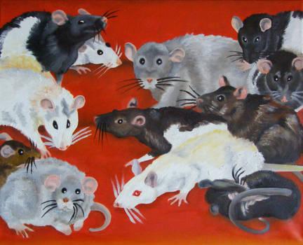 Szczury by Kejti2002