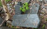 2017 - Cmentarz Brodnowski by Kejti2002