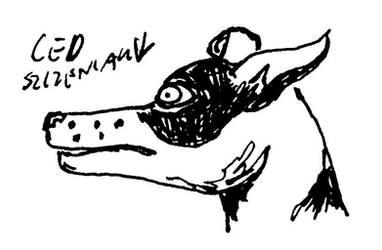 Ced - szczeniak