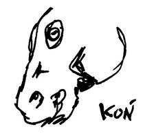Kon by Kejti2002