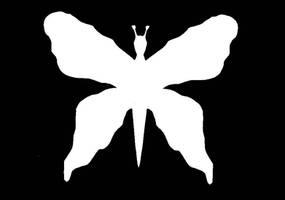 Motyl by Kejti2002
