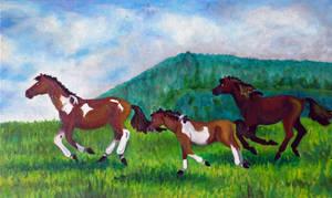 Konie z Regietowa