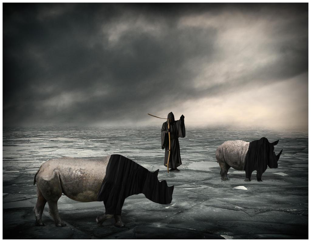 Untitled by davidrabin